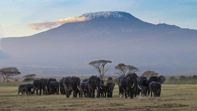Das sind die Top-Sehenswürdigkeiten in Ost-Afrika
